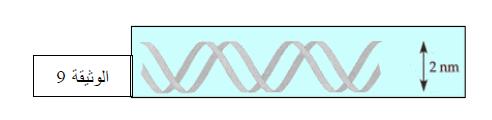 درس تركيب البروتين في مادة العلوم الطبيعية والحياة للسنة الثالثة ثانوي do.php?img=10200