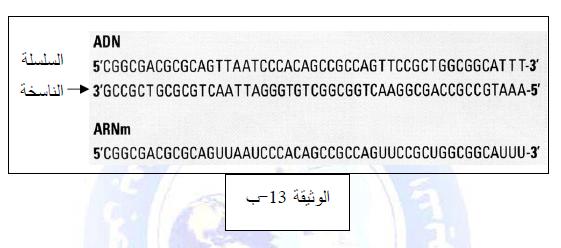 درس تركيب البروتين في مادة العلوم الطبيعية والحياة للسنة الثالثة ثانوي do.php?img=10212