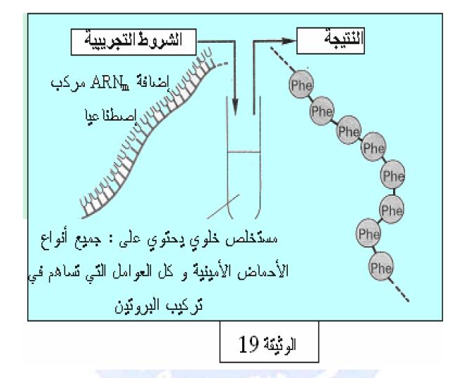 درس تركيب البروتين في مادة العلوم الطبيعية والحياة للسنة الثالثة ثانوي do.php?img=10228