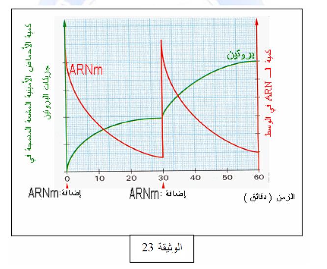 درس تركيب البروتين في مادة العلوم الطبيعية والحياة للسنة الثالثة ثانوي do.php?img=10233